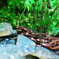 Chains 8-20-14