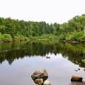 写真: Ice Pond 8-21-14