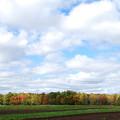 Photos: Autumn in My Town 10-05-14