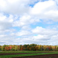 Photos: Autumn in My Town 10-05-14