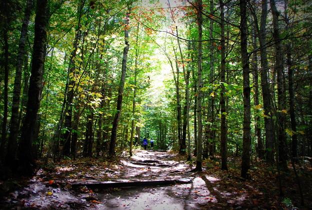 Photos: Hikers 10-05-14