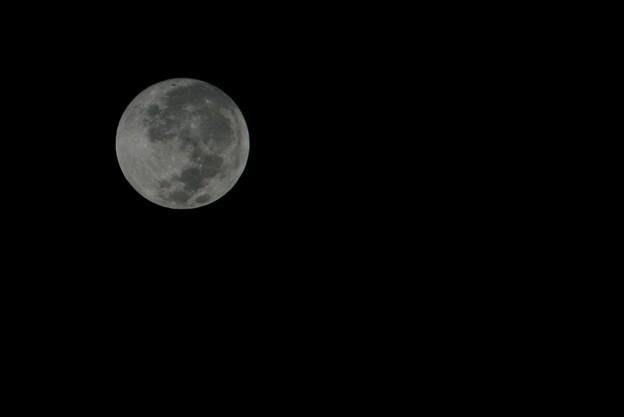 Photos: 十五夜の明けるころ 9-16-16
