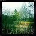 Photos: Spring