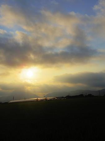 8月の田園の朝景色