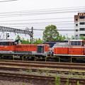 稲沢で休む機関車たち