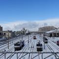 写真: 雪に中で休む機関車たち