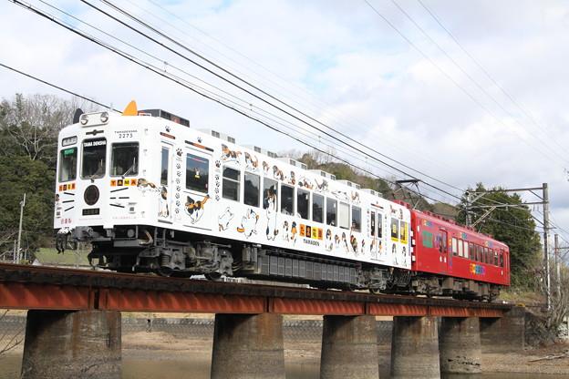 たま+おも電車