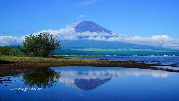 富士三昧:水溜りの逆さ富士