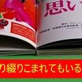 Photos: 映画チラシ製本204