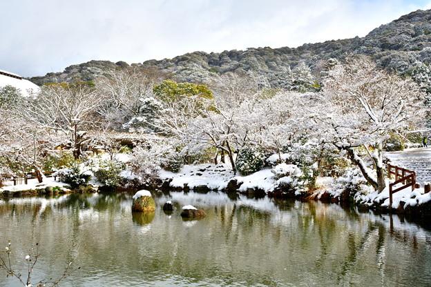 2017_0115_113146 円山公園雪化粧