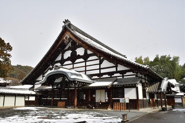 2017_0115_130821 東福寺庫裏雪化粧