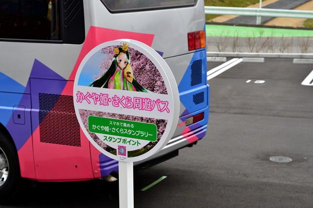 2017_0326_142653 かぐや姫・さくら周遊バス