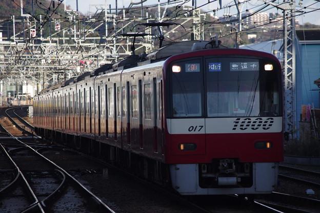 IMGP5308