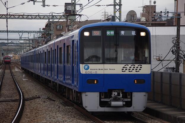IMGP5480