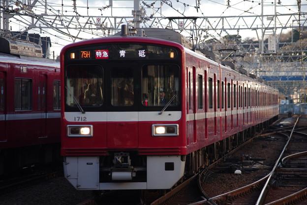 IMGP6095