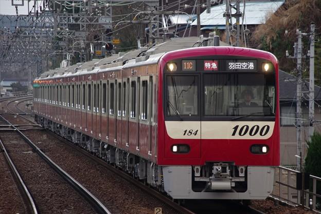 IMGP6765