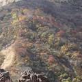 Photos: 蔵王へ