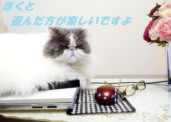 写真: パソコンジャック2