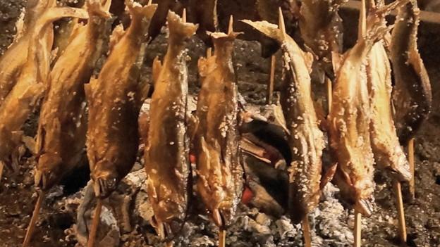 鮎の炭火焼2