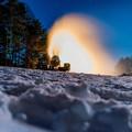 Photos: 冬に吠える