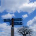 写真: 雲の道標