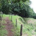 写真: 櫓跡から見た天守跡