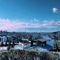 写真: 早春の富士山