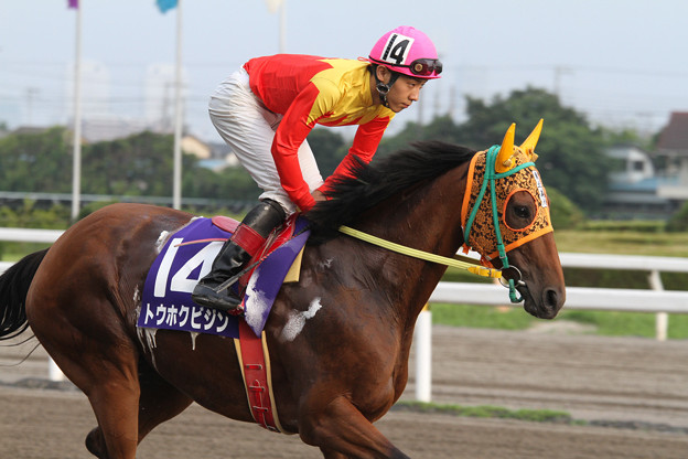 トウホクビジン 返し馬(14/07/21・第4回 習志野きらっとスプリント)