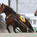 タカラシップ レース(16/05/01・4R)