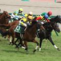 ガリバルディ レース_1(16/07/24・第64回 トヨタ賞中京記念)