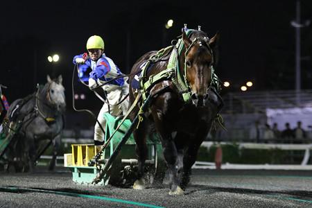 キンメダル レース(16/09/25・第24回 銀河賞)