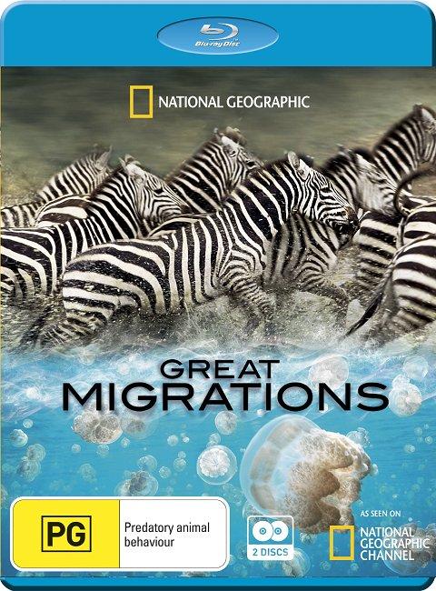 国家地理-大迁徙.1080P