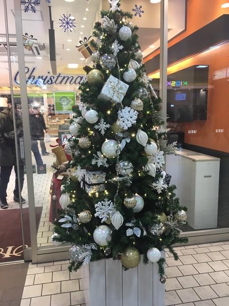 クリスマスツリー 津田沼駅