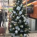 Photos: クリスマスツリー 津田沼駅