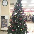 Photos: クリスマスツリー おおたきショッピングプラザオリブ