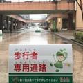 Photos: フルルちゃん 歩行者専用通路 フルルガーデン八千代