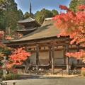 写真: 常楽寺