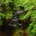 6-13cf 019濃溝の滝
