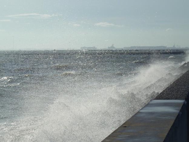 稲毛海岸 海その673 RIMG7141