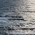 城ヶ島 海その701 IMG_1093