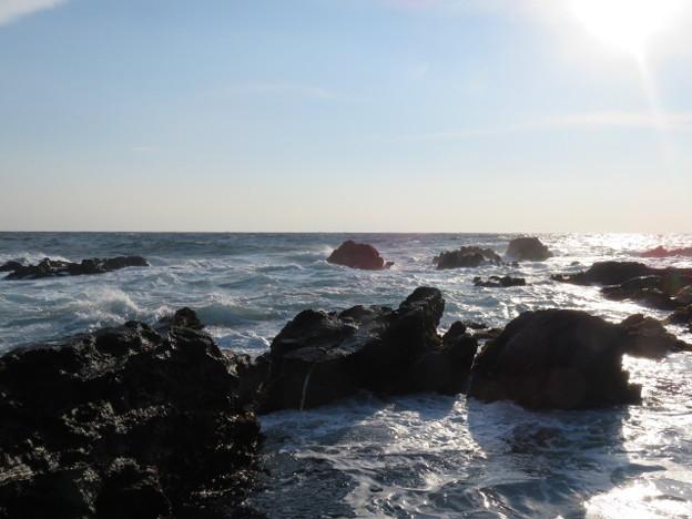 城ヶ島 海その711 IMG_1142