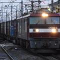 Photos: 東北本線 貨物列車 RIMG3319