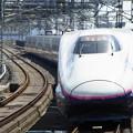 Photos: 東北新幹線 はやて盛岡行 RIMG3364