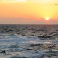 Photos: 城ヶ島 海その741 IMG_1418