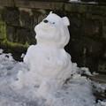 雪のくまさん