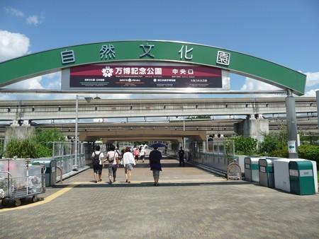 140830-万博記念公園 (8)
