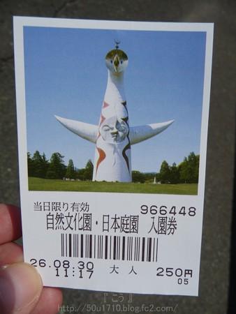 140830-万博記念公園 (9)