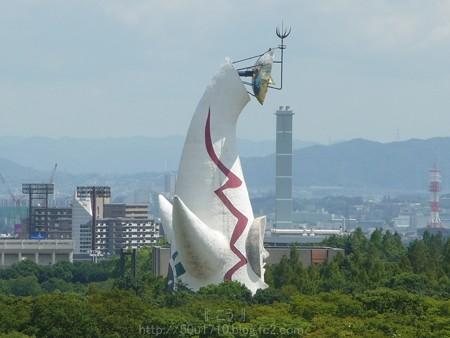 140830-万博記念公園 (18)