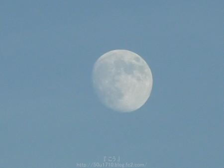 141006-お月さん (6)