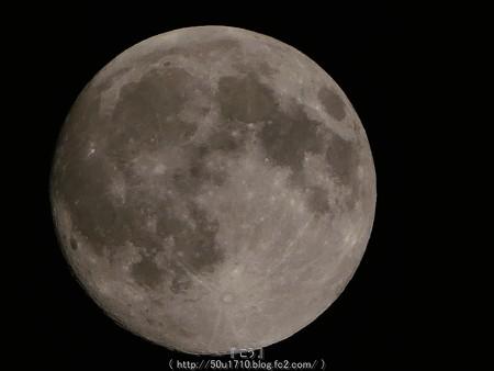 160817-お月さん (35)